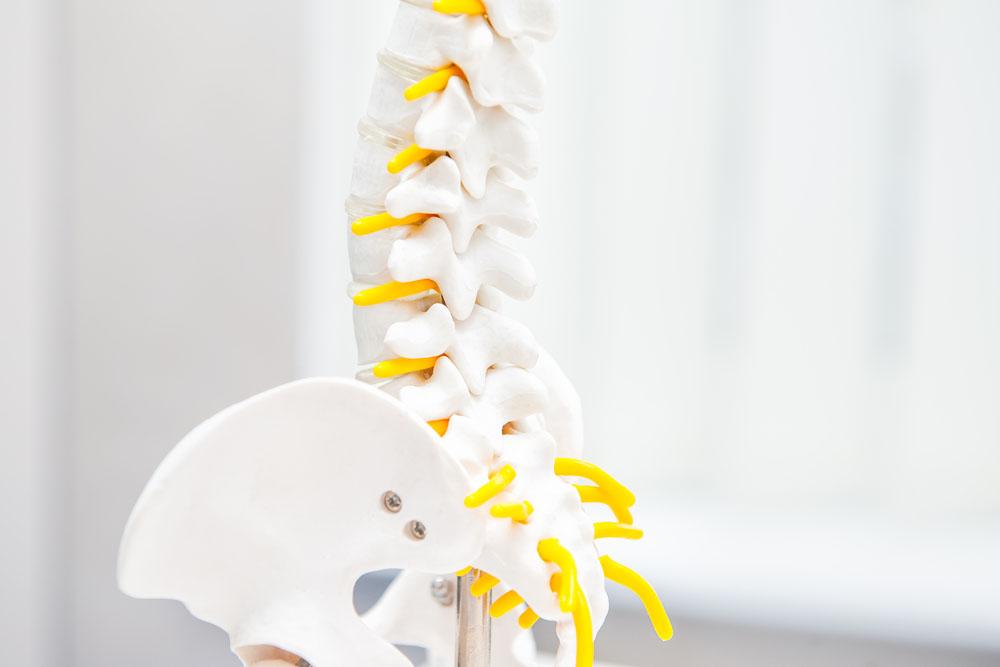 Spinal Decompression Pensacola